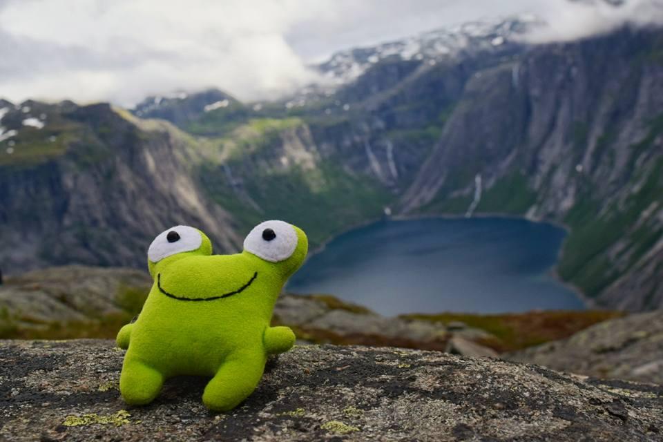 Кулуарчик в Норвегии