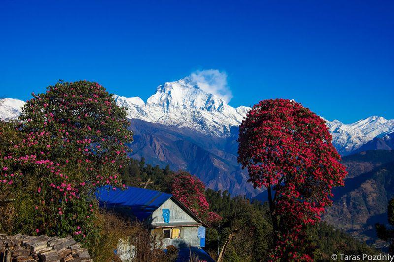Туры в Непал весной и на майские 2017
