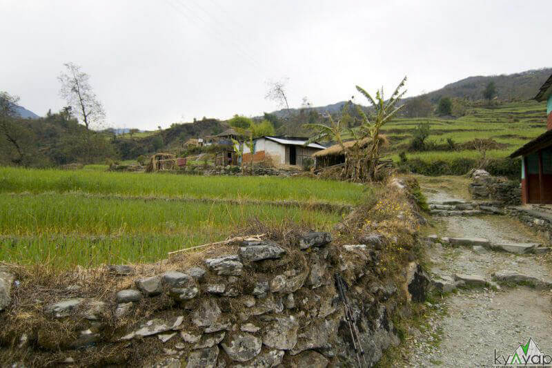 типичное село