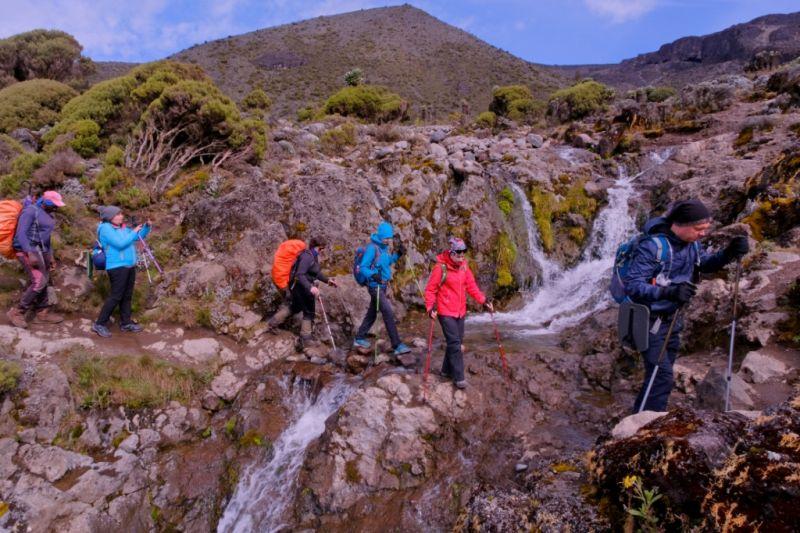 восхождение на г. Килиманджаро (5 895 м) по маршруту Мачаме