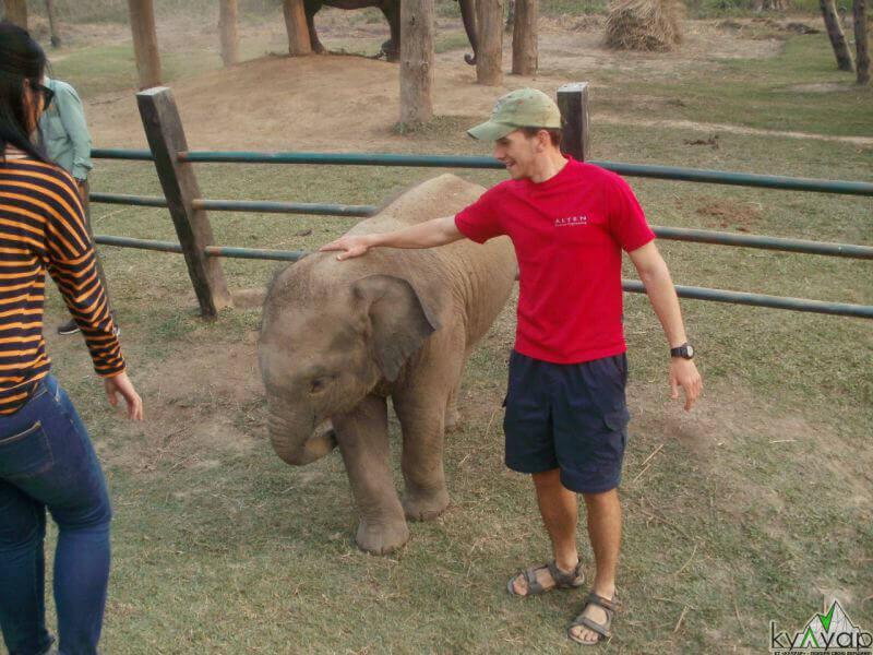 со слоненком