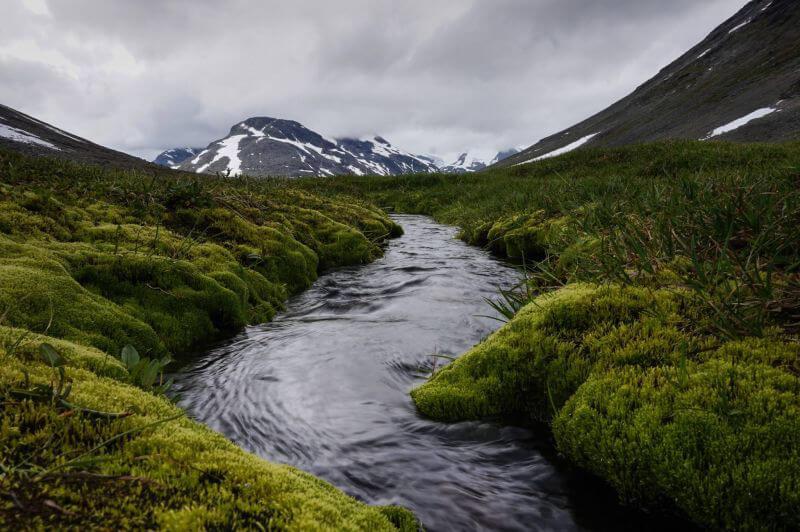 Ручейки, и мох, и горы, и камни