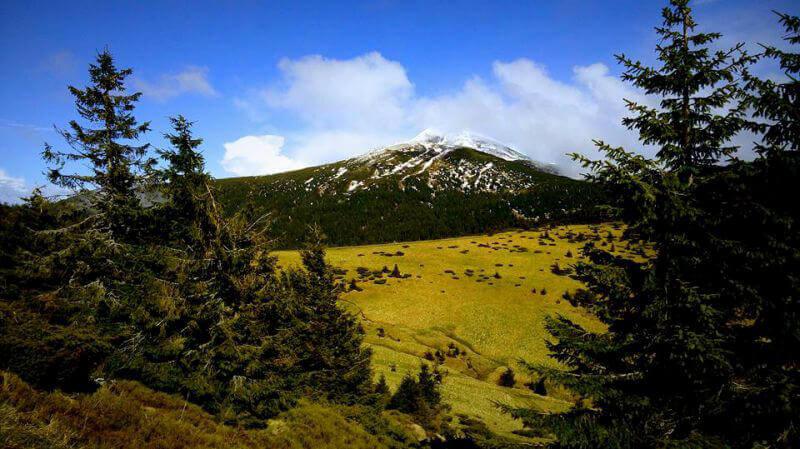 Піду в гори ще і ще