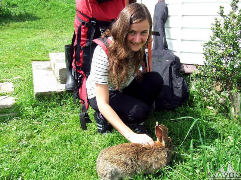 з кроликом