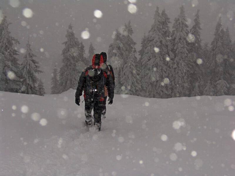 Идем сквозь снег и вьюгу