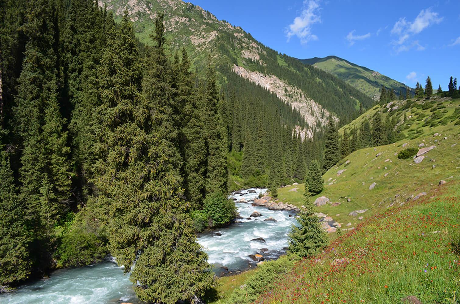 Пейзаж Киргизии