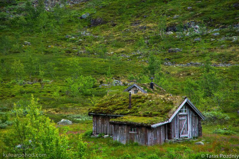 домик с крышей со мха