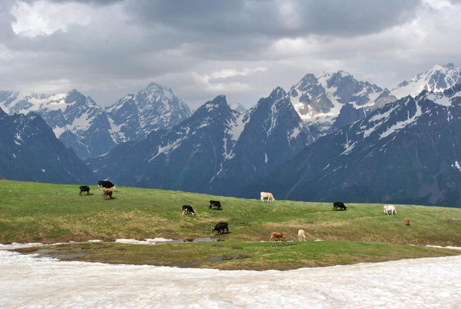 Поход по Сванетии - снег и лошади