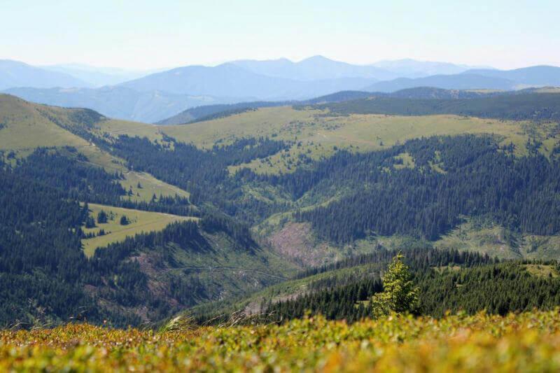Панорама Карпат