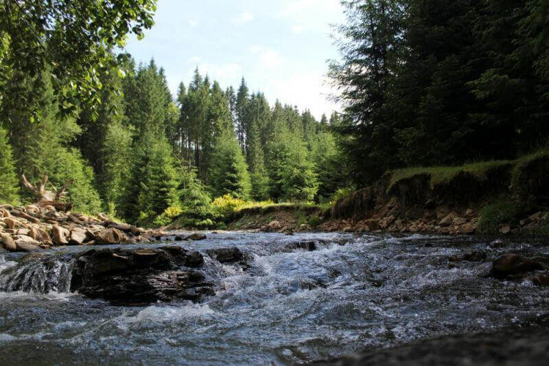 Горная река Карпат