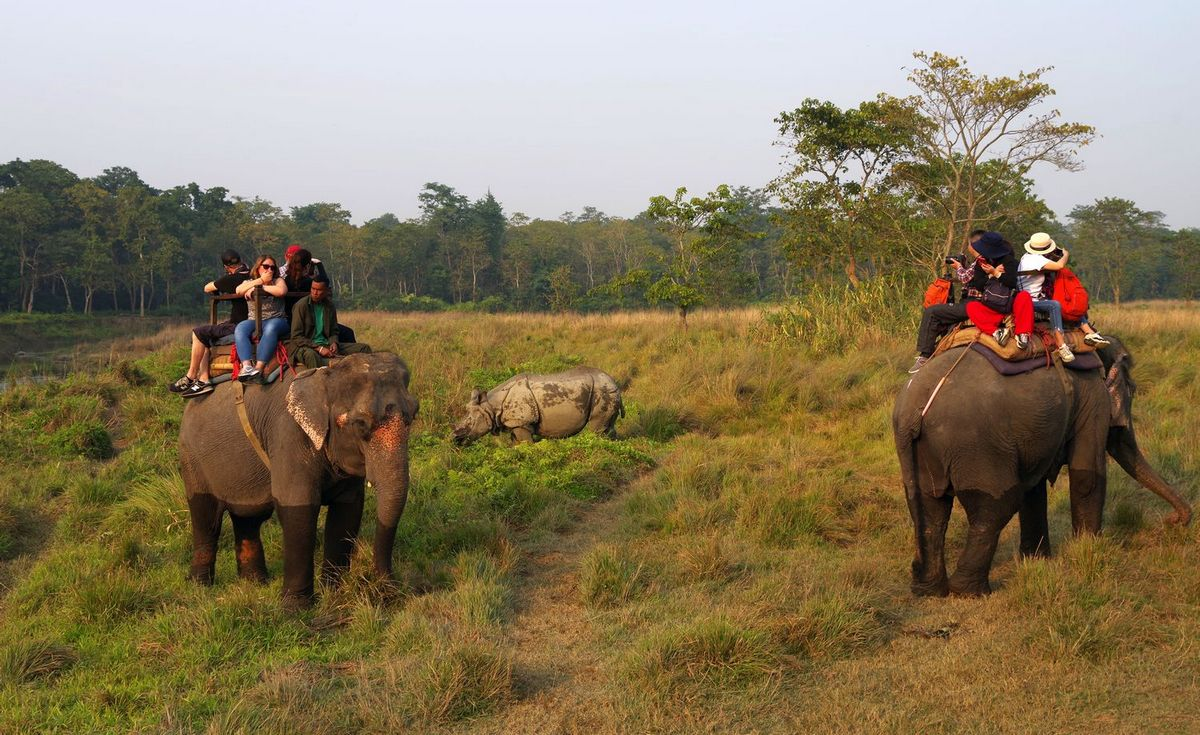 Национальный парк Читван - фото 10