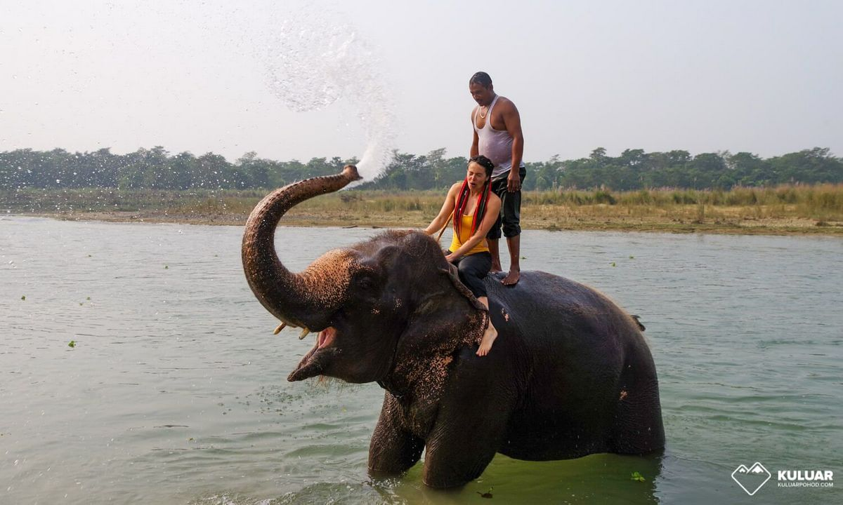 Национальный парк Читван - фото 3
