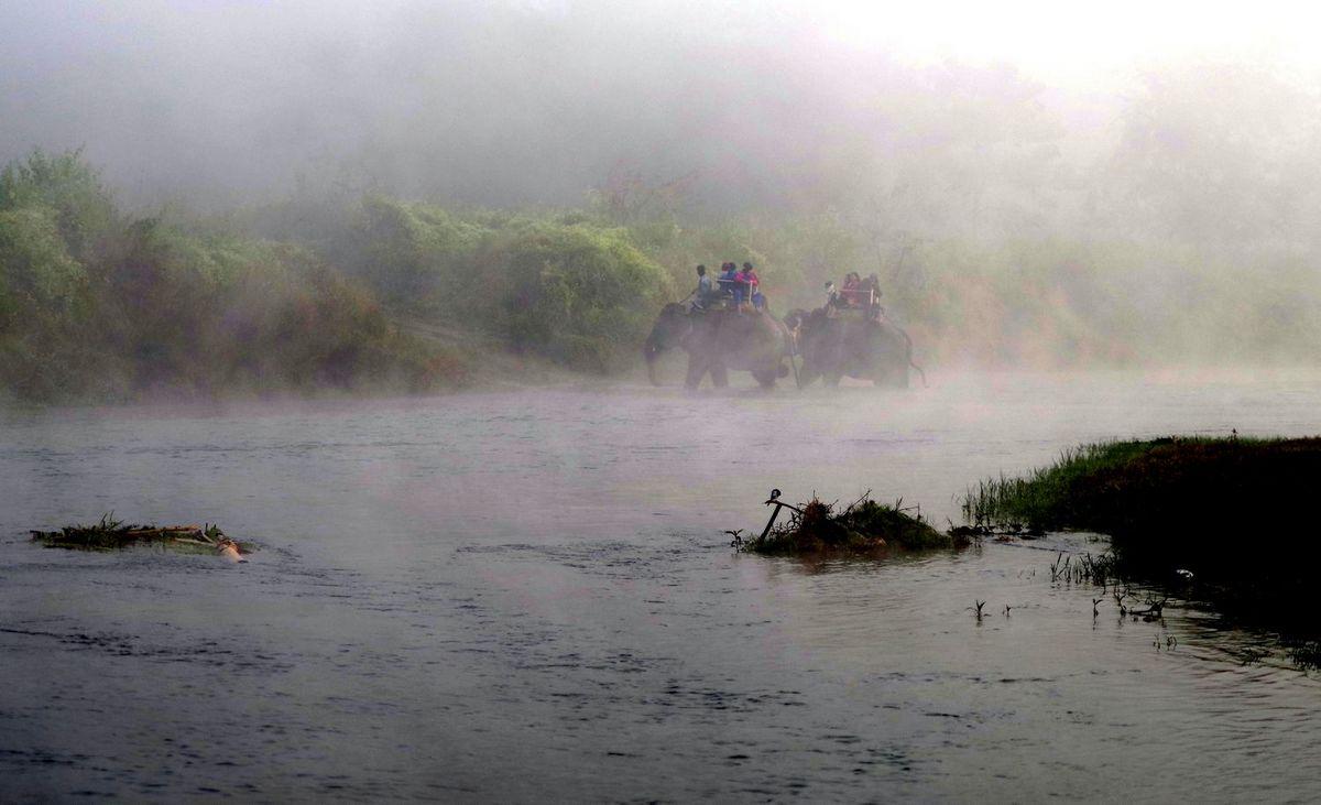Национальный парк Читван - фото 4